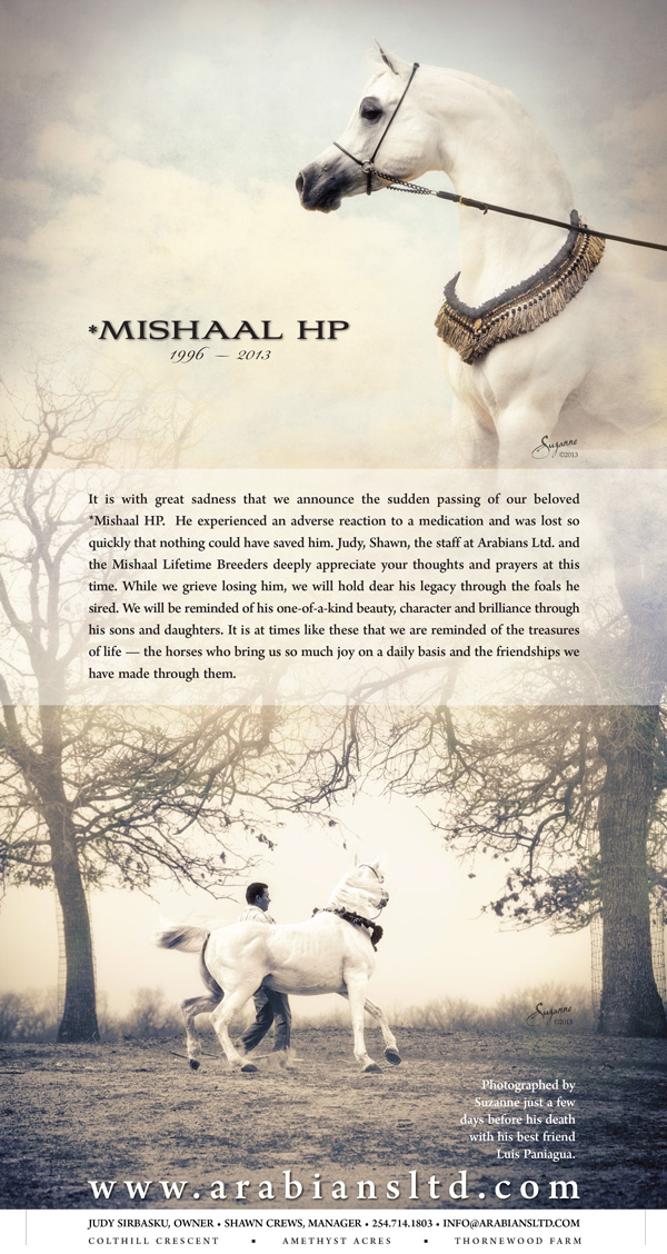 In Memory of Mishaal HP